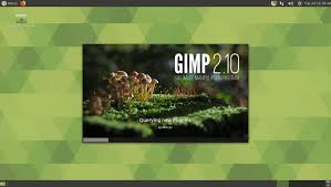 Top Best Free GIMP Plugins For Designers To Add To GIMP